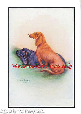 Antique Art~Black and Brown Dachshunds~ NEW Note Cards