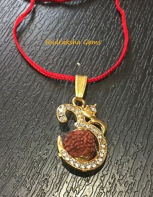 Om Aum Indonesia Five 5 Paanch Mukhi Facet Rudraksha Rudraksh Pendant With Chain