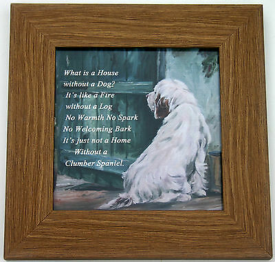 CLUMBER SPANIEL DOG FRAMED glossy hardboard plaque Sandra Coen sublimation