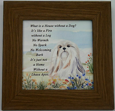 LHASA APSO DOG FRAMED glossy hardboard plaque Sandra Coen sublimation print