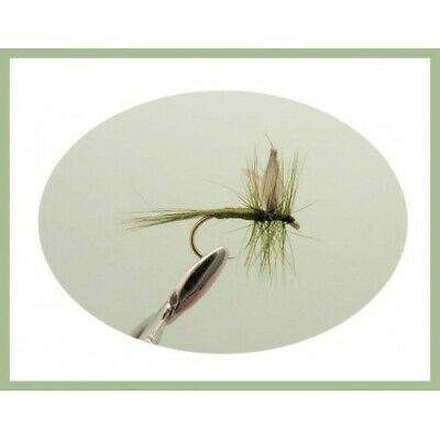 6 Dark Olive Dry Trout Fishing Flies, Choice of sizes available,