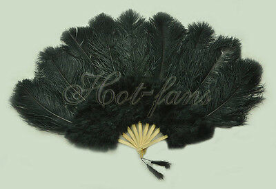 "Black Ostrich & Marabou Feathers fan Burlesque carrying case 24""x 43"""