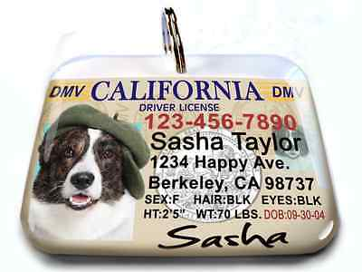 California vanity drivers license dog cat custom novelty tag for pets by ID4PET