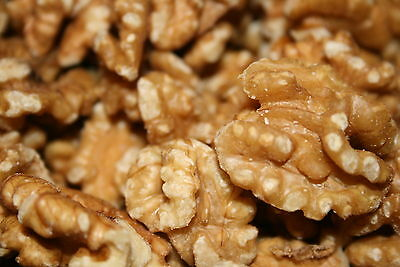 Bayside Candy-10-Pounds-RAW-SHELLED-PREMIUM-WALNUTS-FREE SHIPPING