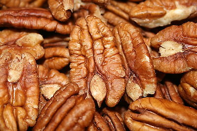 Pecans Raw Unsalted, 5Lbs