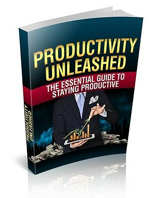 Productivity Unleashed  + 10 Free eBooks With Resell rights ( PDF )