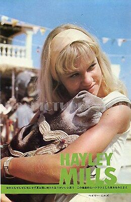"""HAYLEY MILLS / JOHNNY HALLYDAY 1965 Vintage JPN PICTURE CLIPPING 7x10"""" #FF/R"""
