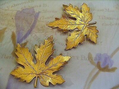 Extra-Large Raw Brass Maple Leaf Stamping (1) - S3088