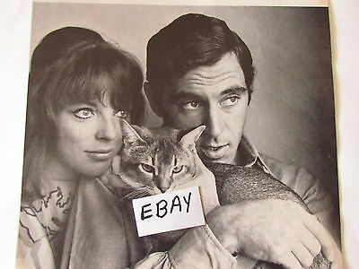 1963 Magazine Clipping JOAN COLLINS,ANTHONY NEWLEY - Dynasty,Empire Of The Ants