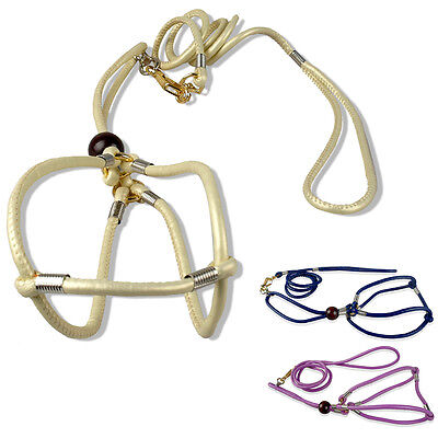 3 Colors Dog Pet Harness And Leash Set For Small And Medium Dog