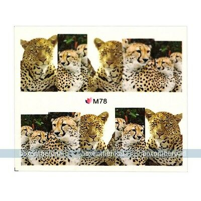 Nail Decals Full WRAPS Leapard Print Animal Water Transfer Stickers diy deco #3