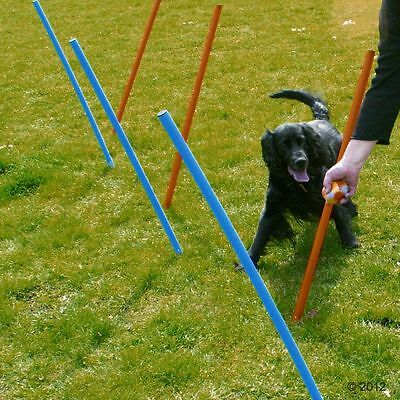 Dog Agility Set of 5 Poles Exercise Equipment Weave/Obedience/Show Training