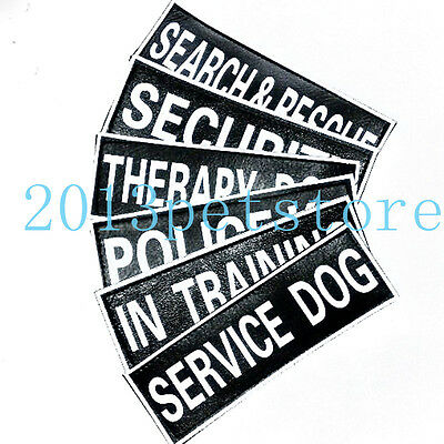 Patches SERVICE DOG THERAPY IN TRAINING Label Tag for Dog Harness 2 Sizes