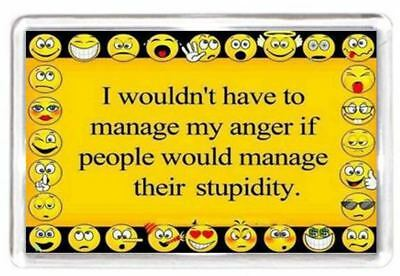 Fridge Magnet Manage Anger Annoy People Control Stupid Smile Quotes Saying Gift