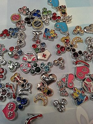 Floating Charms For Memory Charm Lockets