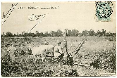 CAMPAGNE. AGRICULTURE.MACHINES AGRICOLES. FOURCHES AMéRICAINES. FARMING.CAMPAIGN
