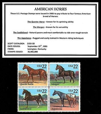 1985 - AMERICAN HORSES - Mint -MNH- Block of Vintage Postage Stamps