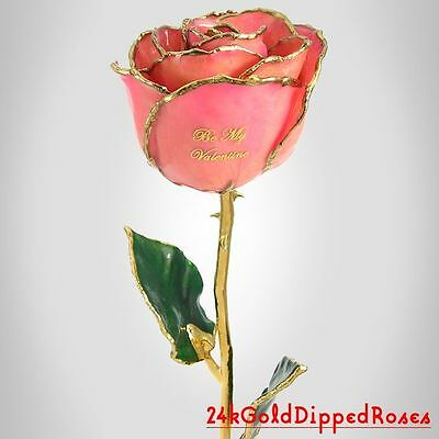 24k Gold Dipped Be My Valentine Pink Real Rose (Free Valentine's Day Gift Box)