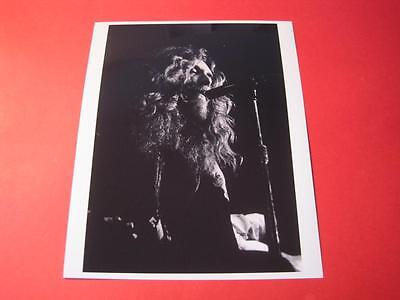 LED ZEPPELIN  10x8 inch lab-printed glossy photo P/1176