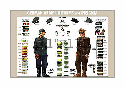 World War II German Uniforms & Insignia - 11x17 inch US War Dept WW2 Poster