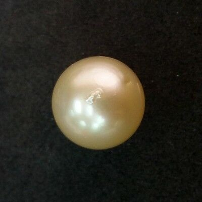 Loose Gold South Sea Pearl AA 11.2x10.6mm