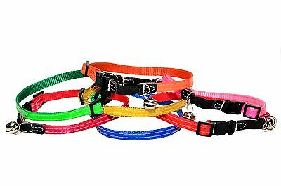 Reflective Neon CAT KITTEN Adjustable NYLON COLLAR  with Clip On Buckle & Bell