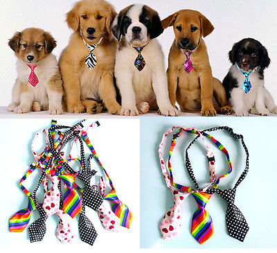 Adjustable Dog Cat Pet Lovely Adorable sweetie Grooming Tie Necktie Random