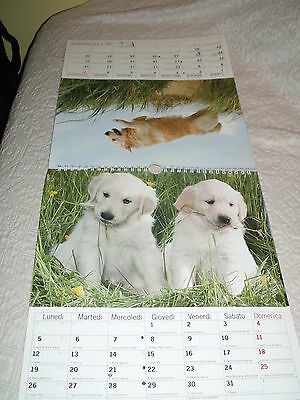 Calendario Cani 2014 Golden Retriever - Nature's Calendar - Perfetto