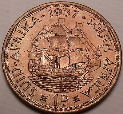 Large Scarce Unc South Africa 1957 Penny~Dromedaris~Excellent~Free Shipping