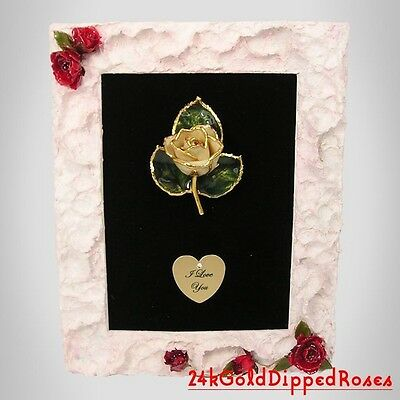 """White 24k Gold Dipped Rose 7""""x9"""" Frame Real Roses -Free Mother's Day Gift Box"""