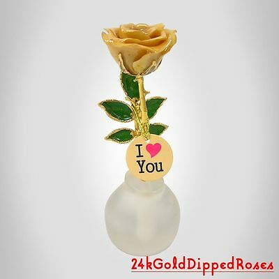 24k Gold Dipped Ivory Real Rose in Stand w/ Charm (Free Christmas Gift Box