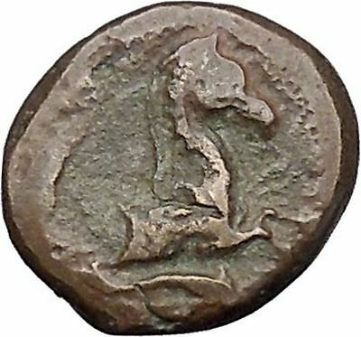 Panormos in Sicily 336BC RARE Ancient Greek Coin APOLLO Cult Horse i47298
