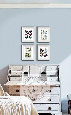 Butterflies & Wildflowers set of 4 Wall Hanging Girl room Decor Prints