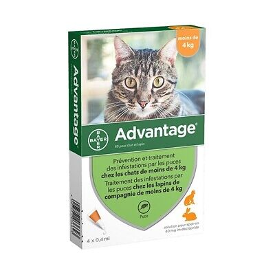 Advantage Anti-puces pour Chat ( 4 kg) - 6 pipettes