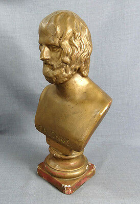 """17"""" Galenus Apothecary Pharmacy Decorate Bust Gilt Gesso Sculpture Statue Figure"""