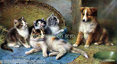 Antique Art~W.Schwar~Cute Collie Dog Pup with Kittens~ NEW Large Note Cards