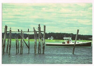 Maine Postcard Pine Point Scarborough Maine Old Boat Harbor Scene in Maine ME
