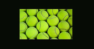 15 used tennis balls (free and fast shipping)