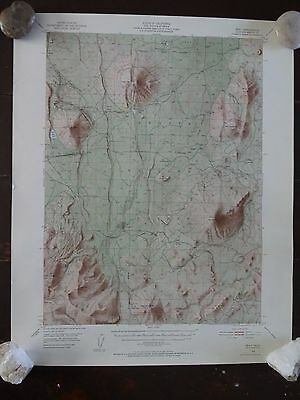 1950 - ANTIQUE Topographic Map of BRAY QUADRANGLE - California-Siskiyou Co.