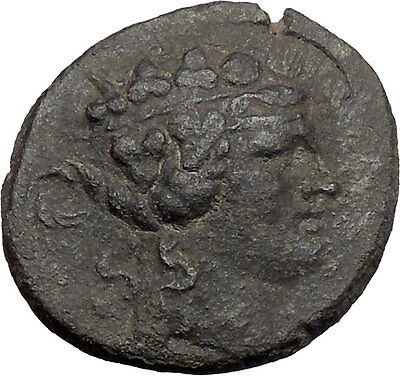MARONEIA in THRACE 148BC Dionysus LARGE Authentic Ancient Greek Coin i48640