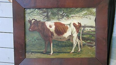 Wonderful Antique Oil Painting Of A Cow in a Burled Wood Frame