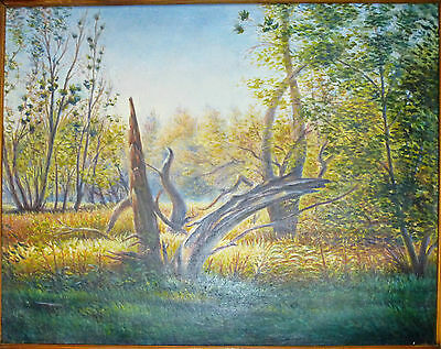 The forest  - ORIGINAL OIL Painting - from Ukraine! LANDSCAPE WALL decor ART