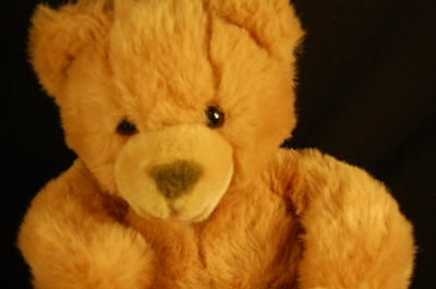 "Russ Berrie Talking Teaching Tan Lovey Bear 10""  Plush Stuffed Animal Lovey Doll"