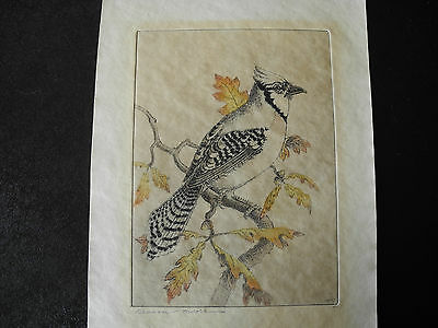 Benson Bond Moore ORIGINAL PENCIL-SIGNED COLORED  ETCHING Blue Jay