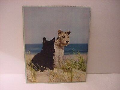 Vintage 1940 Color Print: SCOTTISH TERRIER Mac And His Terrier Companion Mike