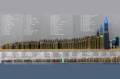 Bullet Caliber Comparison Chart Poster 11in x17in Mini poster