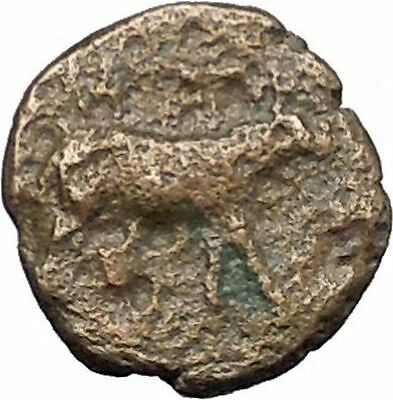 IONIA Klazomenai  350BC Very rare Ancient Greek Coin RAM Athena facing  i49507