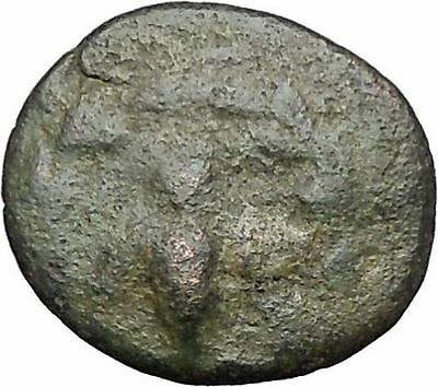 EPESUS Ephesos IONIA 200BC Bee Stag Rare Authentic Ancient Greek Coin i49745
