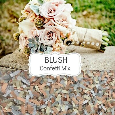 BLUSH Wedding Confetti Biodegradable Paper Table Scatters Vintage Wedding Luxe