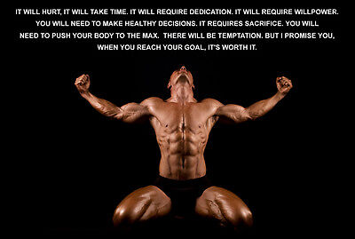 BODYBUILDING INSPIRATIONAL MOTIVATIONAL GYM BIMG01 Poster PRINT A0,A1,A2,A3,A4